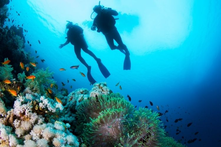 diving in italy