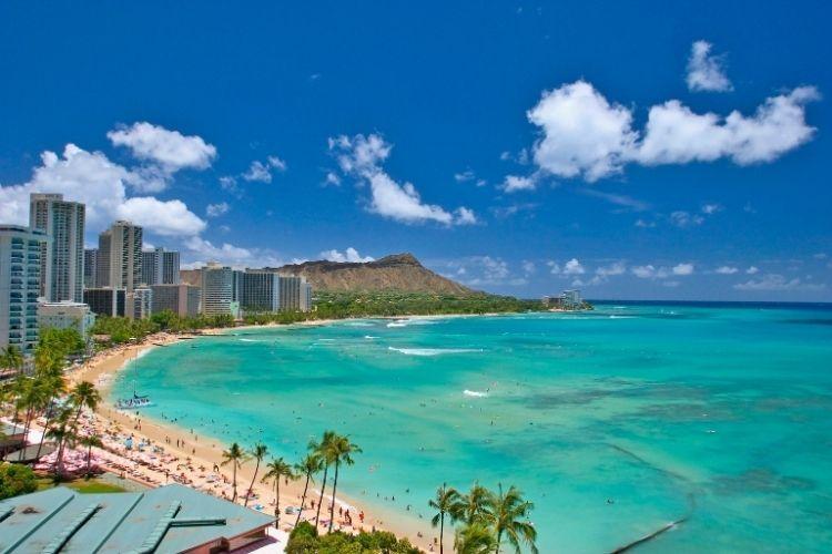 Diving Trip to Oahu