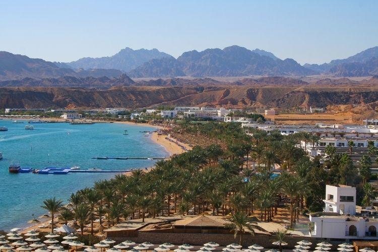 Sharm El Sheikh Dive Sites Explore the Colorful Red Sea